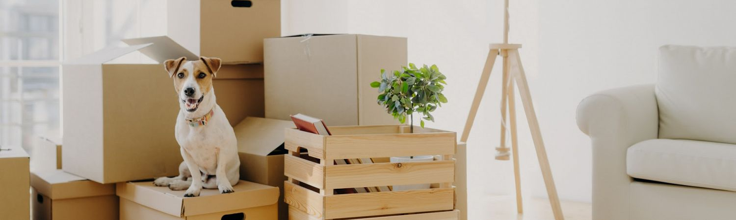 The Best Moving and Storage Company in Kelowna