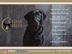 Cedar Hills Dog Academy