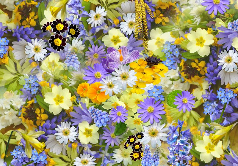 The Best Florist or Place To Get Flowers in Kamloops