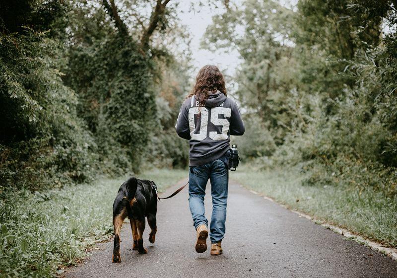 The Best Dog Walking Service in Kelowna